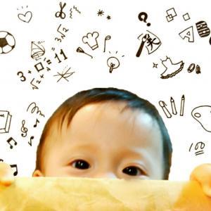 11か月幼児の賢さを検証