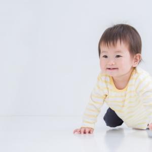 なんでも口にする赤ちゃん対策(紙類編)