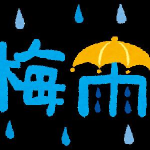 梅雨時の過ごし方