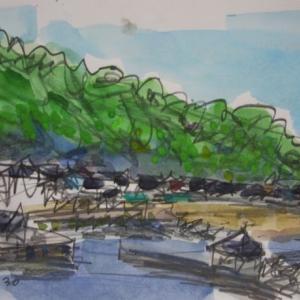 飛島舘岩から勝浦港を望む