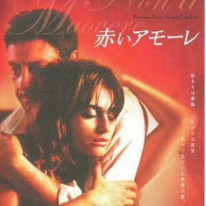 映画『赤いアモーレ』★愛人の愛~ピンクの鏡と赤いハイヒール