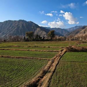 アフガニスタンの土地面積の単位