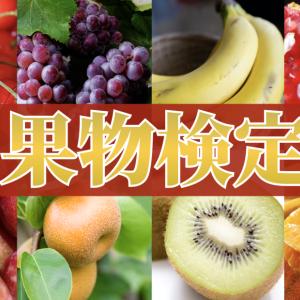 果物4択クイズ