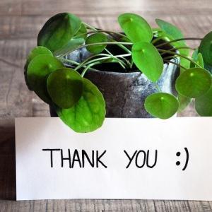 「ありがとう」と伝えることの科学的な意味!快楽適応に注意して!