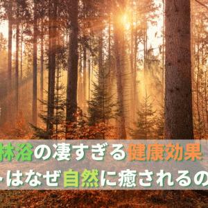 【森林浴の健康効果】ヒトはなぜ自然に癒されるのか?