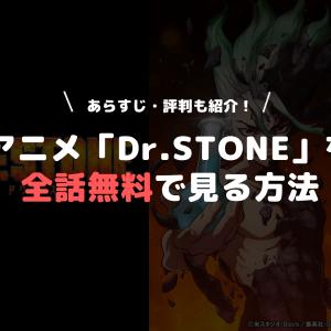 アニメ「Dr.STONE(ドクターストーン)」を全話無料で見る方法|あらすじ・評判も紹介!