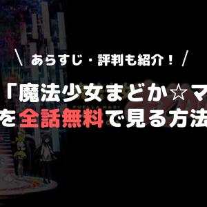 アニメ「魔法少女まどか☆マギカ」を全話無料で見る方法 あらすじ・評判も紹介!