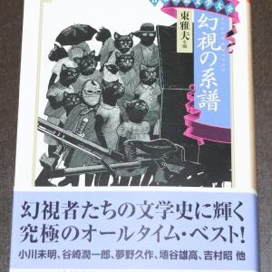 最近読んだ本 『日本幻想文学大全2 幻視の系譜』(東雅夫編、ちくま文庫)