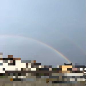 ワンコが虹🌈の橋を渡りました。⭐️