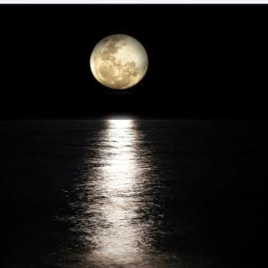 明日の満月にやるといいことを、あの方に教えていただきました。
