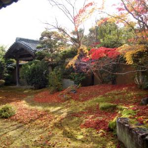 庭園50清涼寺(嵯峨釈迦堂)庭園 伝小堀遠州の枯山水庭園
