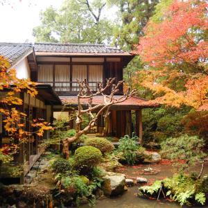 庭園54 長楽寺庭園 相阿弥の銀閣寺庭園試作の庭