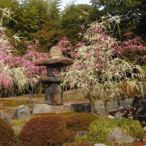 庭園55 城南宮神苑「楽水苑」 中根金作の趣の異なる5つの庭園