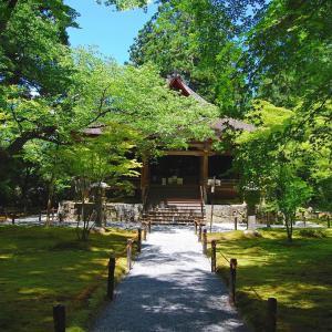 庭園56 三千院門跡庭園 茶人・金森宗和の自然美を生かした庭園