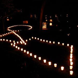 妙心寺東林院「梵燈のあかりに親しむ会 20周年」に行って来ました。