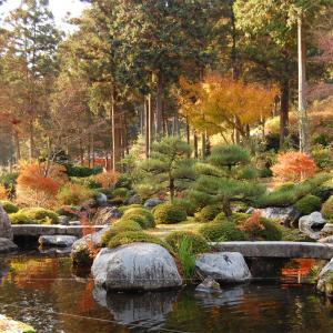 庭園58 三室戸寺庭園 中根金作の石庭と池泉回遊式庭園