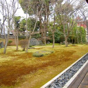 庭園62 妙心寺塔頭衡梅院「四河一源の庭」 妙心寺四派の根源の庭