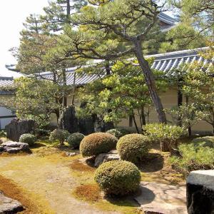 庭園64 妙心寺東海庵庭園 趣の異なる3つの庭園
