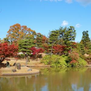 淀川サイクリングロードで枚方の以楽公園へ