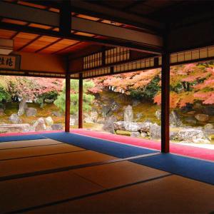 庭園40 高台寺塔頭圓徳院庭園 桃山時代の豪壮な枯山水