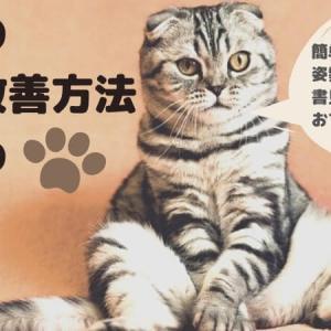 子供の猫背改善はベルト×書見台で!よい姿勢で勉強すれば学習効率もアップ
