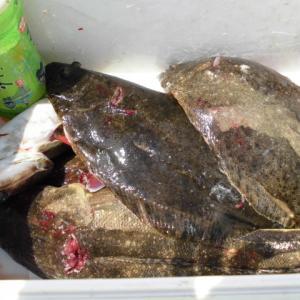 国東半島 鯛ラバ