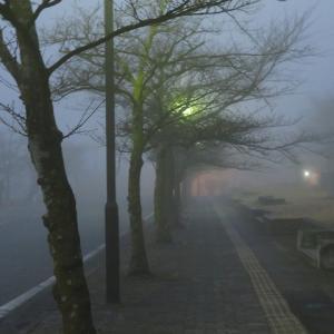 フィナーレは霧の中