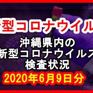 【2020年6月9日分】沖縄県内で実施されている新型コロナウイルスの検査状況について
