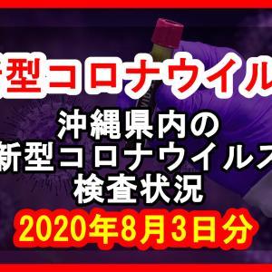 【2020年8月3日分】沖縄県内で実施されている新型コロナウイルスの検査状況について