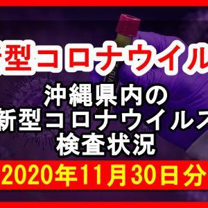 【2020年11月30日分】沖縄県内で実施されている新型コロナウイルスの検査状況について