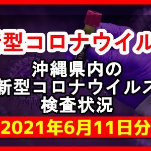 【2021年6月11日分】沖縄県内で実施されている新型コロナウイルスの検査状況について