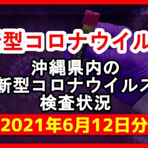 【2021年6月12日分】沖縄県内で実施されている新型コロナウイルスの検査状況について