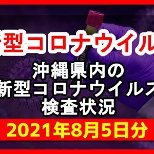 【2021年8月5日分】沖縄県内で実施されている新型コロナウイルスの検査状況について