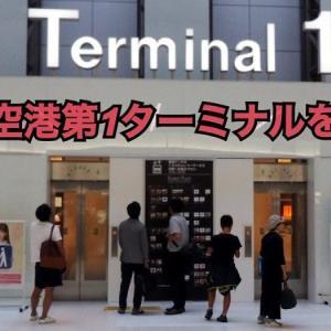 【JAL・SKY】羽田空港国内線第1ターミナルを紹介!