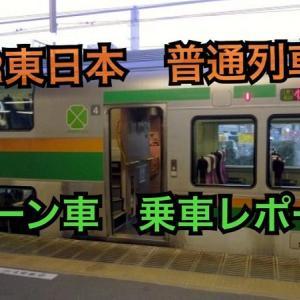 JR東日本 普通列車グリーン車 乗車レポート