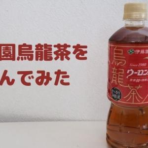 【赤の烏龍茶】伊藤園烏龍茶を飲んでみた~すっきりして飲みやすい~
