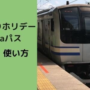 2021年版のんびりホリデーSuicaパスの使い方【東京近郊のおでかけにおすすめ】