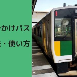 2021年版 休日おでかけパスの買い方・使い方【東京近郊のお出かけに使える】