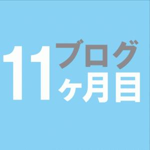 雑記ブログ初心者11ヶ月目【中卒41歳】