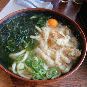 福岡に来たらうどん食べてほしいですね