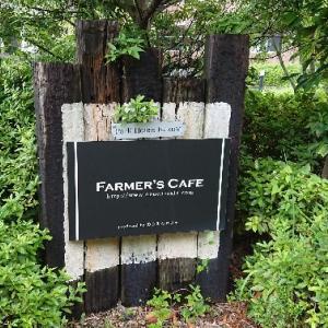 木更津の山奥に行列のできるカフェがあった【FARMER'SCAFE】