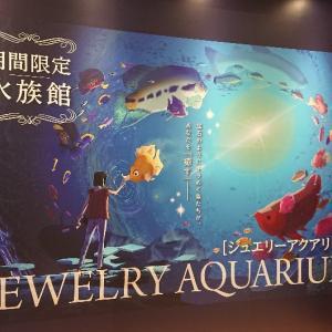 なんとか時間を見繕って木更津に水族館に行ってきました