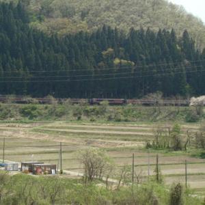 昔のSLの写真(692) 磐越西線 尾登