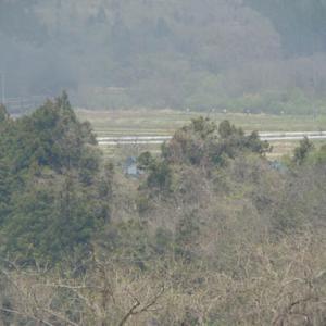 昔のSLの写真(702) 磐越西線 一の戸鉄橋