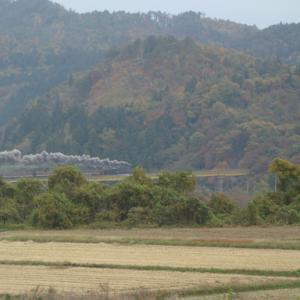 磐越西線 一の戸鉄橋 2020年11月7日