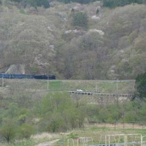 昔のSLの写真(725) 釜石線 柏木平