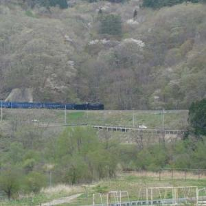 昔のSLの写真(726) 釜石線 柏木平