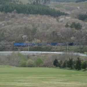 昔のSLの写真(728) 釜石線 柏木平
