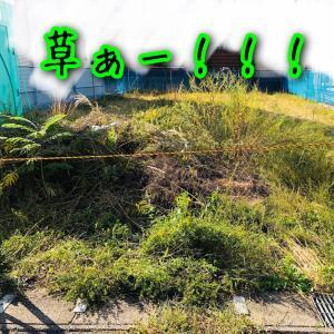基礎前の草刈り草刈り〜!
