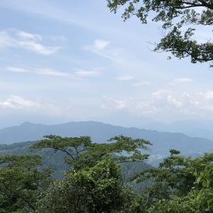 今日の高尾山から富士山方面